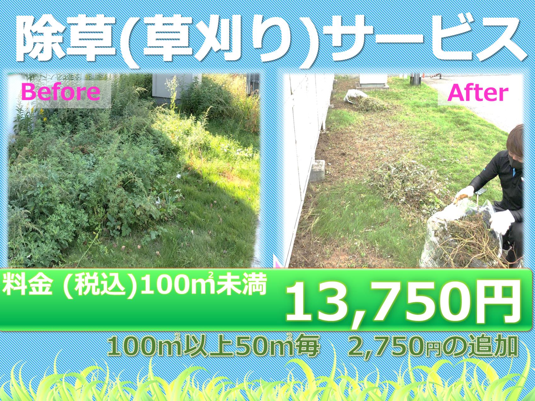 ◆除草サービス(新料金)
